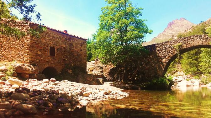 Le moulin de Muriccioli