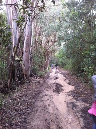 Journée botanique autour du pénitencier de Coti-Chiavari