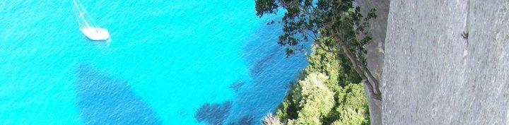 Selvaggio blu