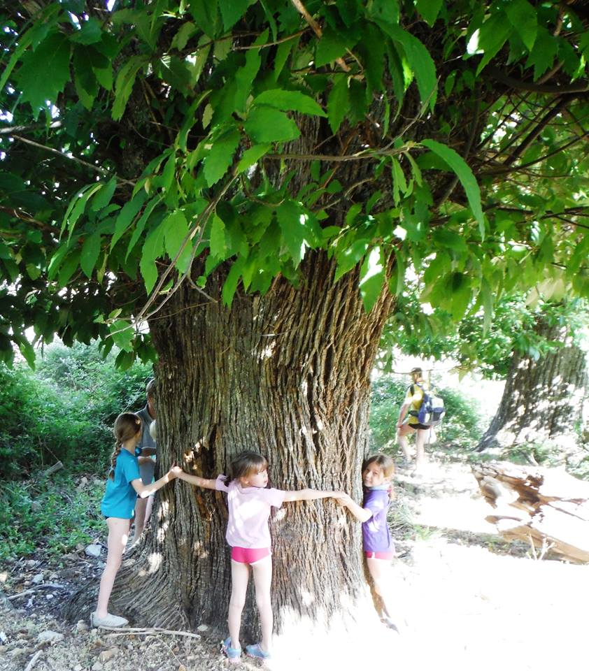 Les enfants en randonnée - Corse secrète